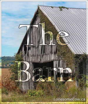 The Barn – Chapters 7 & 8