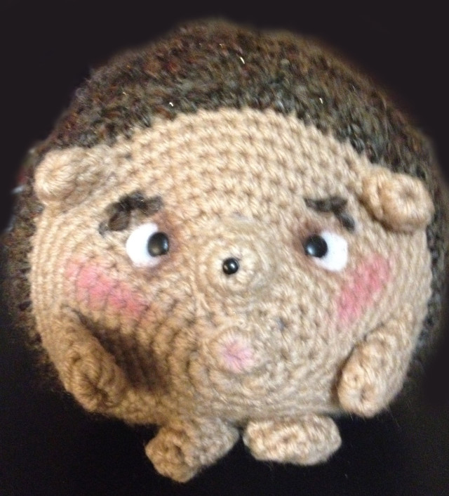 The Cross-Eyed Hedgie