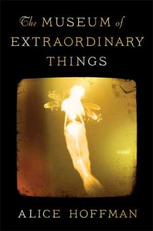 Book Review – The Museum of Extraordinary Things